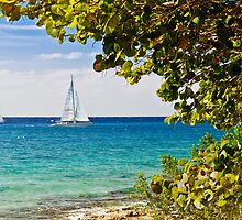 Sailboats at Cozumel, Mexico by Mitchell Grosky