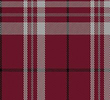 01420 Cornell #2 Tartan Fabric Print Iphone Case by Detnecs2013