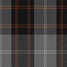 01427 Corrie Fashion Tartan Fabric Print Iphone Case by Detnecs2013