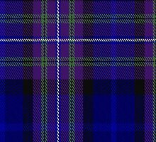 01431 Cowal District Tartan Fabric Print Iphone Case by Detnecs2013