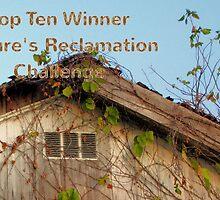 Banner - NR - Top Ten Winner by aprilann