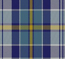 01444 Culloden Blue Dress (Dance) Fashion Tartan Fabric Print Iphone Case by Detnecs2013