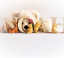 Noah by George Davidson