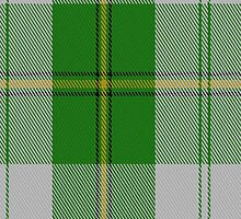 01447 Cunningham Dress Green (Dance) Tartan Fabric Print Iphone Case by Detnecs2013