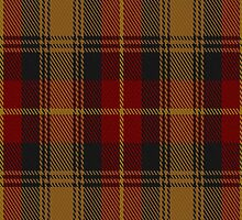 01456 Talladale Fashion Tartan Fabric Print Iphone Case by Detnecs2013
