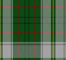 01463 Taylor Dress Fashion Tartan Fabric Print Iphone Case by Detnecs2013