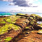 Mossy Rocks by John Sharp