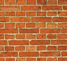 Red Bricks Wall Background by kirilart