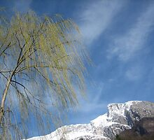Bare Tree and Snowy Mountain by jojobob