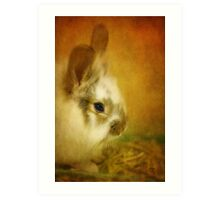 Memories of Watership Down Art Print
