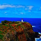 Kilauea Point Lighthouse by Tracey McQuain