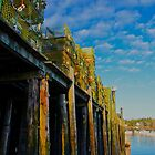 Lobster Traps at Bass Harbor, Tremont, Maine by Dan Hatch
