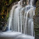 Strickland Falls, South Hobart, Tasmania #6 by Chris Cobern