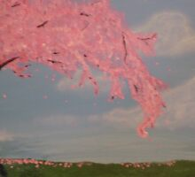 Sakura Tree in bloom by ilovemomo