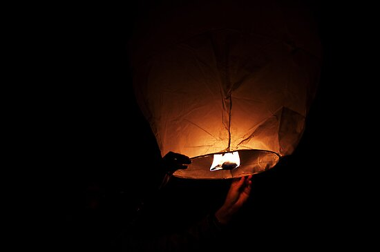 Chinese lantern by Mark Williams