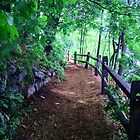 this is the path to wellesley by Erik Lopez