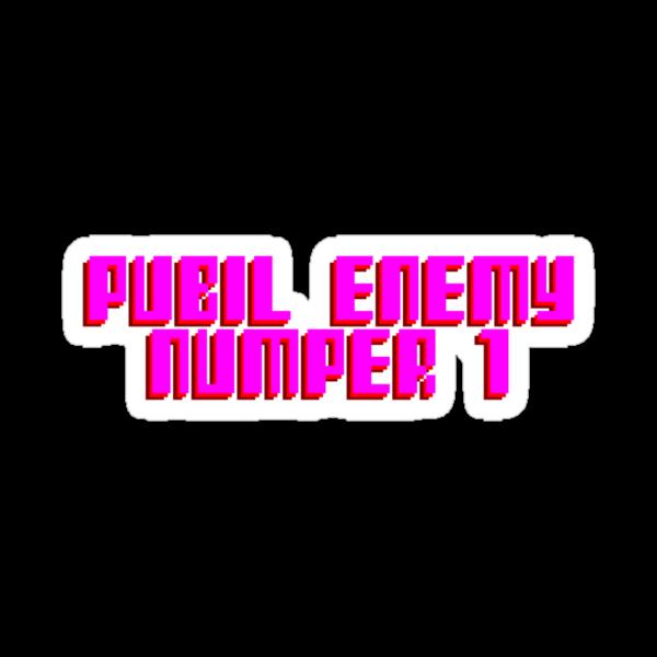 PUBIL ENEMY NUMPER 1 by HauntedBox