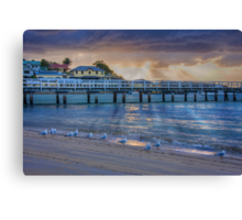 Seagulls like sunrises too Canvas Print
