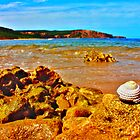 Sunny day at Bells Beach, Victoria by kenea