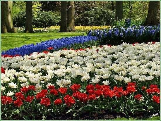 Keukenhof Garden by Janone