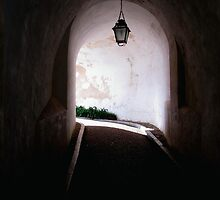 Pena Palace 6 by sghent