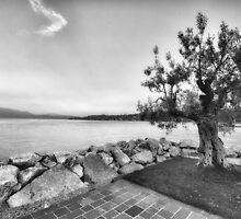 Lake Garda, Italy by Dan Edwards