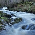 Aira Force 1 by Irina Chuckowree