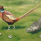 Pheasant Family by Lynne  Kirby
