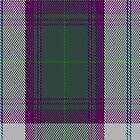 01510 Tweedsmuir Dress (Dance) Fashion Tartan Fabric Print Iphone Case by Detnecs2013