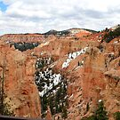 Snow on Bryce Canyon National Park,Utah,USA by Anthony & Nancy  Leake
