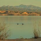 Lake Mead At Sunset by Eleu Tabares