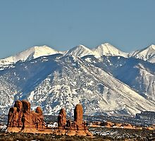 View of The La Sal Mountains by schesnut