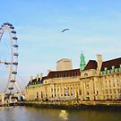 London Eye by Arvind Singh