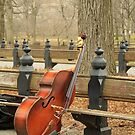 Double Bass in Central Park by Kezzarama