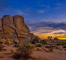 Joshua Tree Sunset by photosbyflood