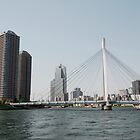 Tokyo Bridge, Japan by jojobob