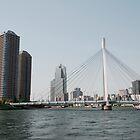 Tokyo Bridge, Japan by jojobob