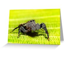 My little friend 01 Greeting Card