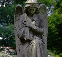 Stone angel by Barry Robinson
