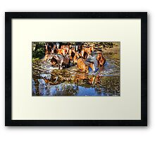 Follow the leader ... which way? Framed Print