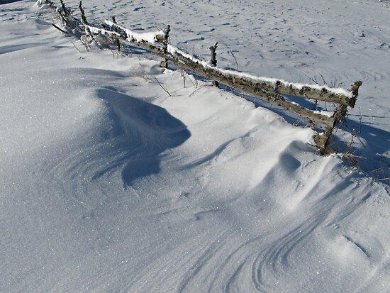 Snowy Winter Scene Detail by kirilart