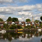 Portmore Quays, Weybridge by Rachael Talibart