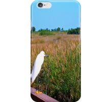 Bird in the Grasslands - Landscape and Nature Photography iPhone Case/Skin