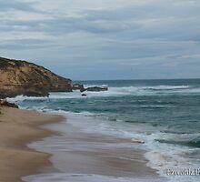 Sorrento Back Beach by Leonie Morris