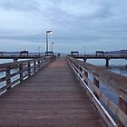 Les Davis Pier - Twilight View on Puget Sound by seeingred13