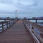 Les Davis Pier - Twilight View on Puget Sound by seeingred13