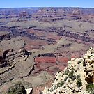 Grand Canyon National Park,Arizonia,USA by Anthony & Nancy  Leake