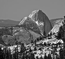 Half Dome in Spring by photosbyflood