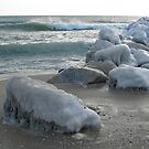 Rocks covered in ice on the sea shore by kirilart