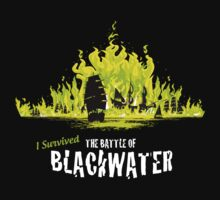 I Survived The Battle of Blackwater by Chema Bola8